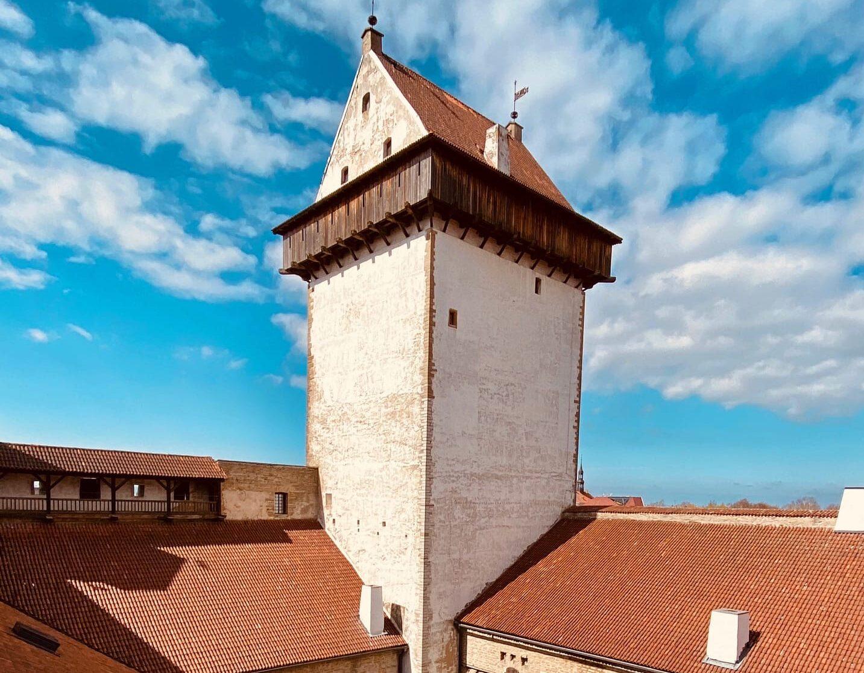 Kallid Narva Muuseumi külastajad.